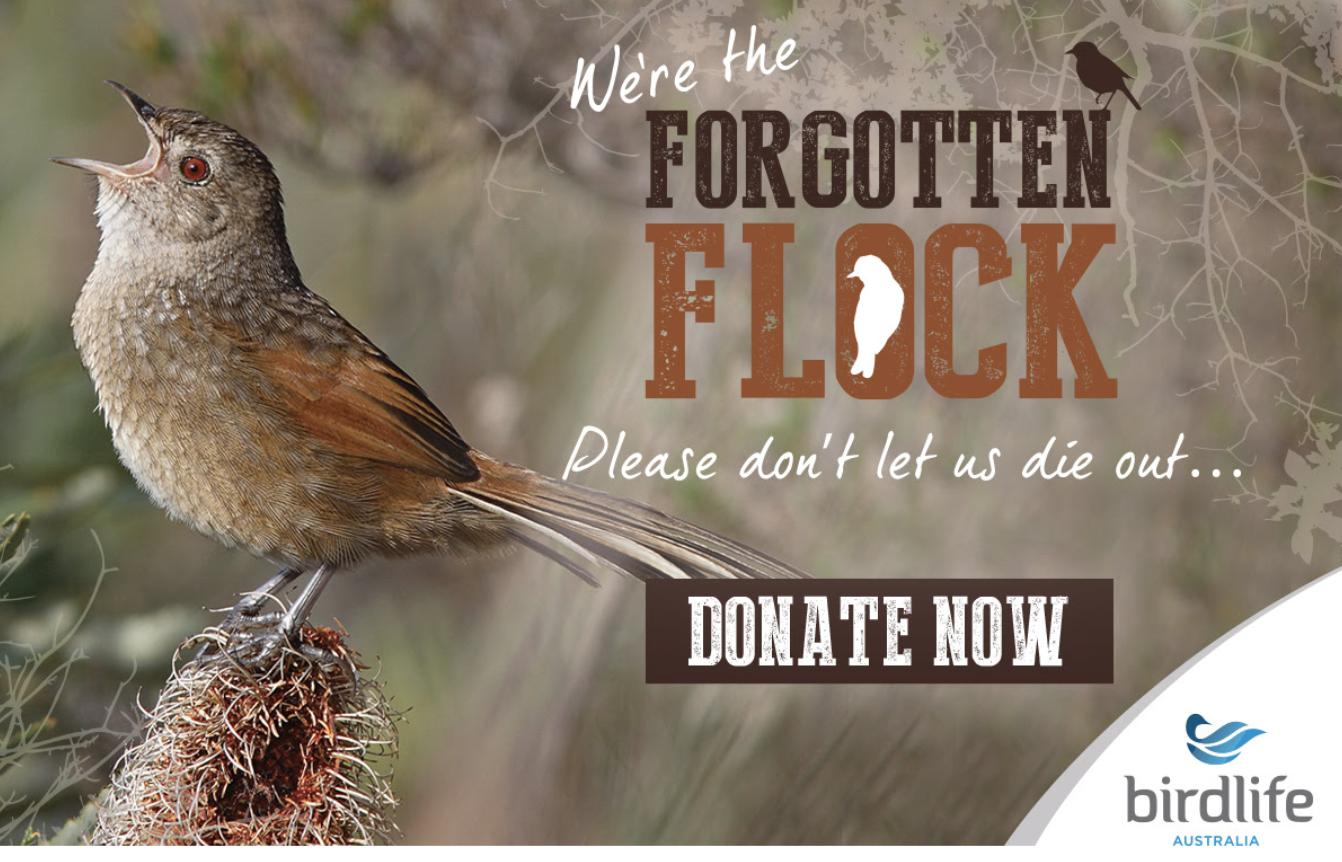 http://www.birdlife.org.au/current-appeal
